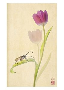 Tulip with beetle note cards
